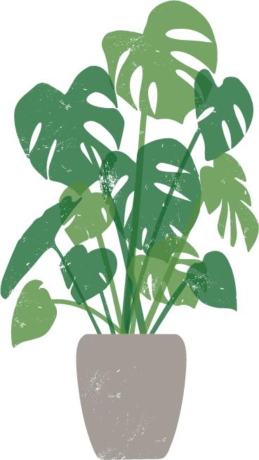 おしゃれポイント2.インテリアに観葉植物を入れる